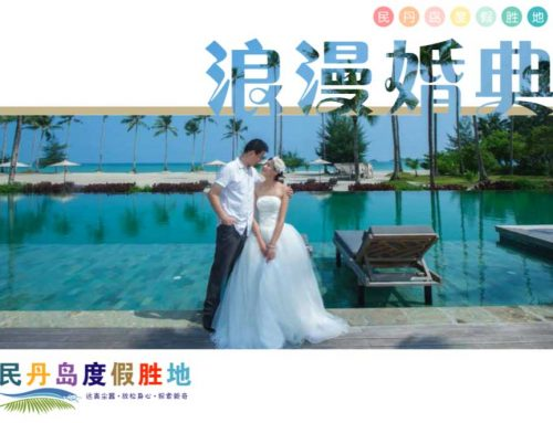 Wedding Brochure (Chinese)