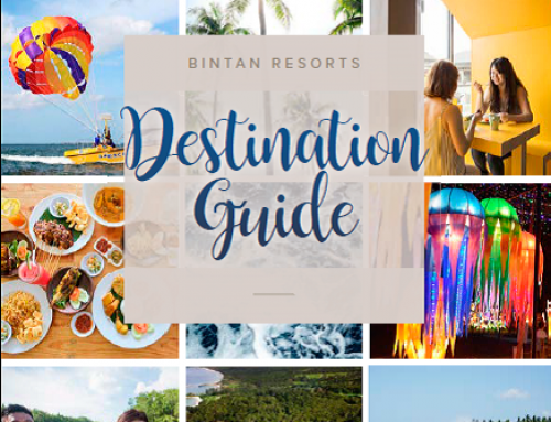 Destination Guide 2018 (English)