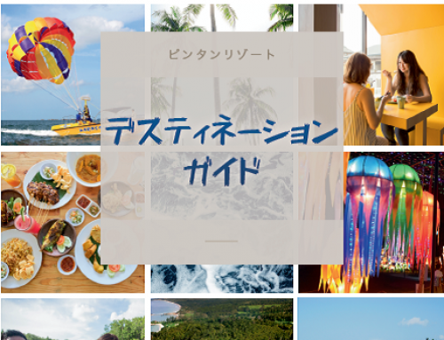 Destination Guide 2018 (Japanese)